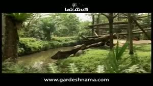 راهنمای گردشگری سنگاپور ۲ - باغ وحش و باغ های گل