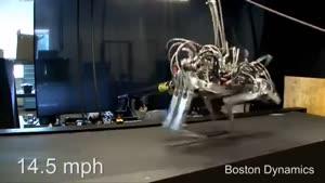 روبات چیتا