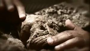 انسان شدن، قسمت اول - (زیرنویس فارسی)