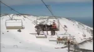 اسکی کردن شتر مرغ ها