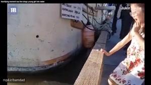 شیردریایی دختربچه ۸ ساله را به درون آب میکشد مواظب فرزندان خود باشید.
