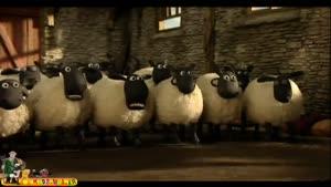 بره ناقلا - قسمت ۱۴ - پشم گوسفند ها