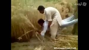 کر کر خنده کمباین افغانی
