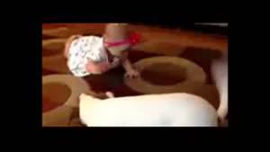 بازی جالب سگ با دختر کوچولو