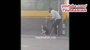انسانیت در ایران هنوز نمرده !