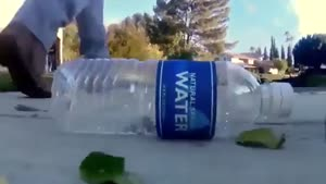 وقتی یک بطری را دور میندازید (بسیار جالب)