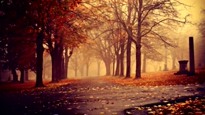 &#۱۴۶Autumn&#۱۴۶s Fall&#۱۴۶ - Chillout Mix by Deren Ozturk