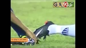 لحظات طنز در فوتبال جهان