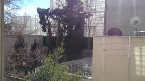 یه روز آفتابی همراه با باران در تهران