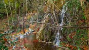 طبیعت زیبای پاییزی در شهرهای ایران