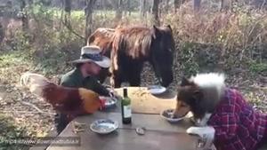 ناهار خوردن مزرعه دار با حیواناتش www.downloadtubia.ir