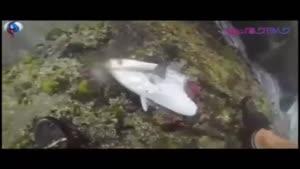 مهیج ترین ماهیگیری جهان