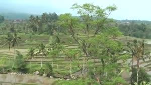 سفری به جزایر بالی