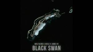 Wolfskind x Adele x Jamie XX - Black Swan