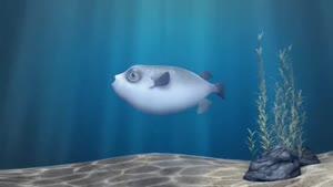 انیمیشن صید ماهی