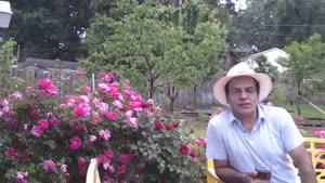 آموزش باغبانی - نگهداری گل