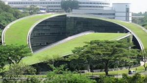 دانشگاهی با بام سبز در سنگاپور، ریه تنفسی شهر