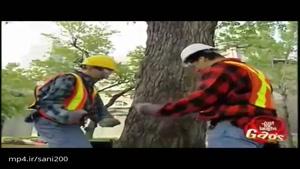 دوربین مخفی خارجی خنده دار قطع شدن درخت