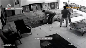 فیلم تکان دهنده از دزدان حرفه ای در مستند جنجالی شوک