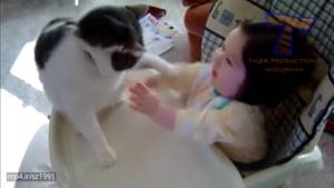بچه ها و گربه ها