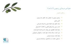 ميوه های قرآنی
