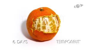 تایم لپس کپک زدن نارنگی