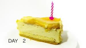 تایم لپس کپک زدن کیک