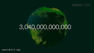 تعداد درختان جهان