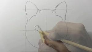 تایم لپس نقاشی گربه