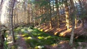 نمایی از طبیعت نروژ با دی جی آی فانتوم