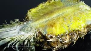 تایم لپس کپک زدن آناناس