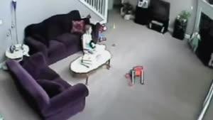 دفاع گربه از بچه ی انسان