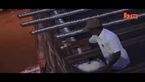 غذا دادن به ۴۰۰۰ طوطی توسط مرد هندی