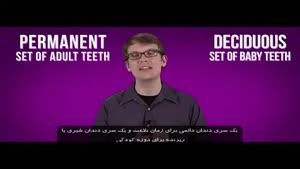 چرا انسانها دندانهای شیری دارند و چرا آنها می افتند ؟