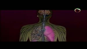 شایع ترین بیماری های عفونی