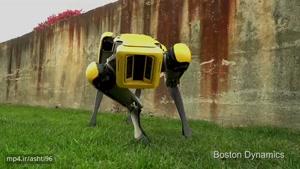 """ورژن جدیدی از ربات"""" SpotMin"""" به زودی معرفی می شود"""