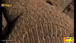 بنای تقویمی تخت جمشید در استان فارس