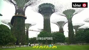 جنگل مکانیکی سنگاپور