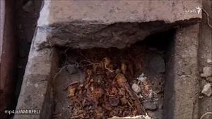 کاوشهای باستان شناسی در محوطه آرامگاه اشکانیان در ارمنستان