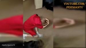 فیلم های واقعی از محافظت کودک توسط سگ