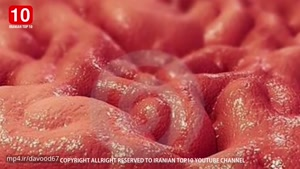 10 نکته جالب و عجیبی که درباره بدن انسان نمیدانید