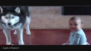 گفتگوی یک سگ با یک کودک