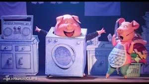 انیمیشن Sing-سکانس اجرای کنسرت خوک ها