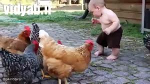 علت گران شدن تخم مرغ