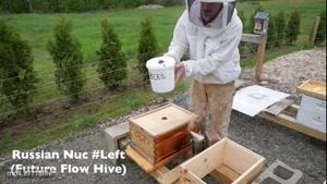 آموزش پرورش زنبور عسل به طور تضمینی در.www.۱۱۸file