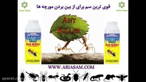 سم کشنده مورچه، از بین بردن قطعی مورچه ها