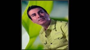 آهنگ آلماغا گلین از رحیم شهریاری