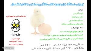 بهترین مرکز فروش دستگاه جوجه کشی و تخم های نطفه دار مرغ و زینتی