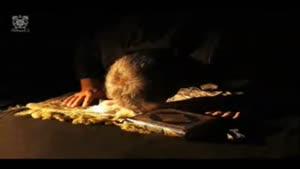 فضائل نماز