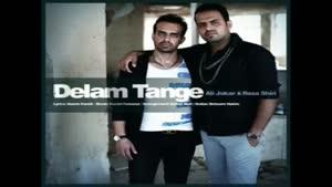 آهنگ دلم تنگه از رضا شیری و علی جوکار